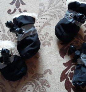Продам новые тёплые ботинки для собак мелких пород