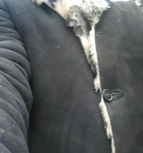 Дыбленко панда