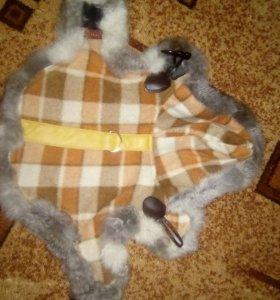 Пальто для собачки с призентом