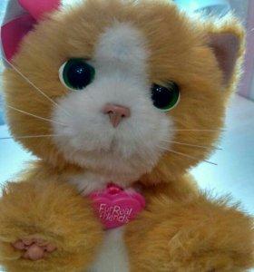Интерактивный котенок Daisy Hasbro