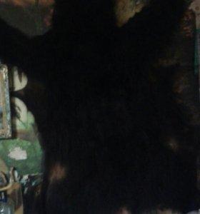 Шкура медведя