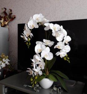 Композиция из белых орхидей.