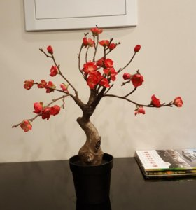 Растение Сакура иск. ИКЕА