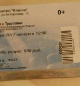 Детский билет