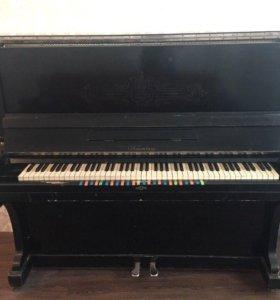 Фортепиано Тюмень