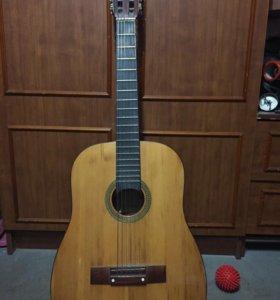 Гитара 12 стурнная
