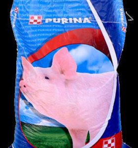 Престартер, Стартер для свиней