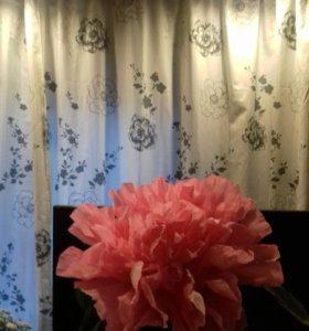 Цветы объёмные для фотосесий