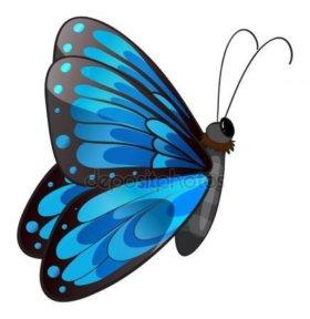 Яркие Живые Бабочки из ЮАР Тропиканка