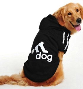 Толстовка для собаки