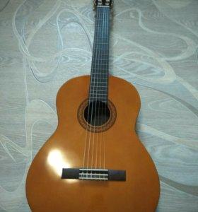 Гитара c 40