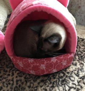 Лежанка для кота или маленькой собачки