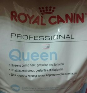 Queen Royal Canin