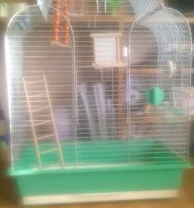 Клетка для попугая со всем содержимым 800р,