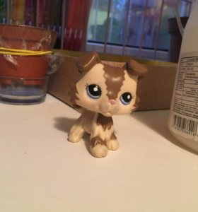Lps Littlest Pet Shop колли