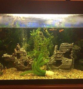 Аквариум для рыб на 300 литров( угловой)