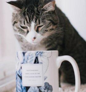 """Чай """"ЗАВОДНОЙ АПЕЛЬСИН """""""
