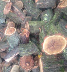 дрова акация