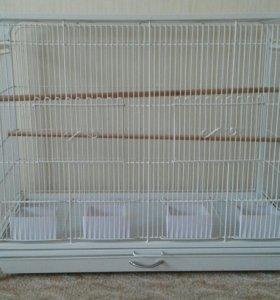 Огромная клетка для волнистых попугайчиков
