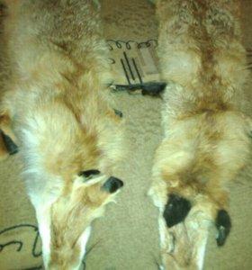 Шкурки лисы