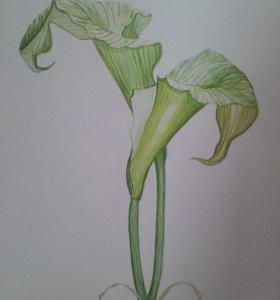 "Картина акварелью ""Цветы"""