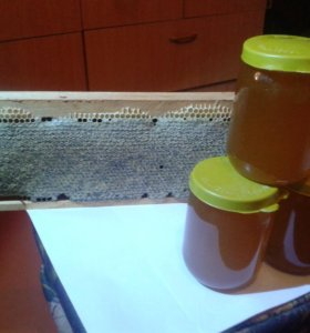 Мёд разнатравие