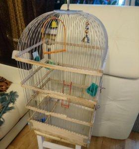 Клетка для птиц. Большая.