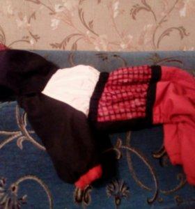 Одежда на маленькую собаку