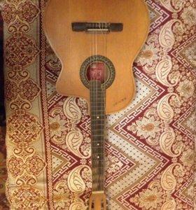 Гитара шестиструнная Хемус