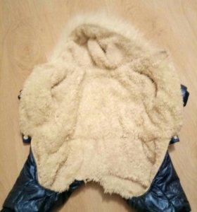 Зимняя куртка для собаки.