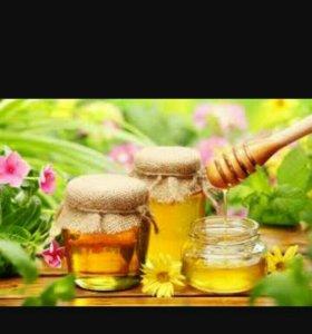 Мед горный с кавказа