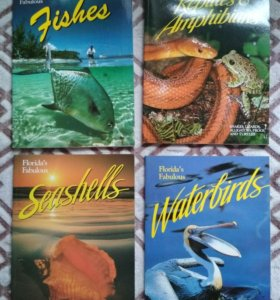 4 книги на англ. яз. Florida's Fabulous