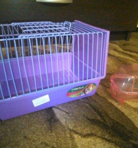 Клетка для хомячка.