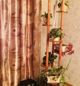 Этажерка для цветов (полка)
