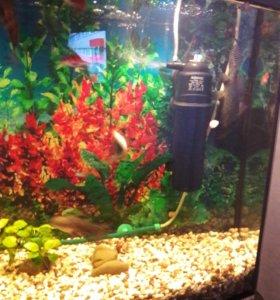 Аквариум с тумбой,рыбки,аксессуары