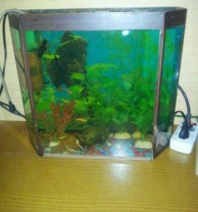 Продам аквариум со всем оборуд ДОСТАВКА