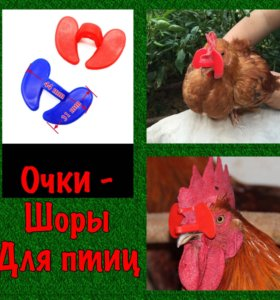 Очки для фазанов и кур