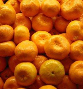 Вкусные мандарины