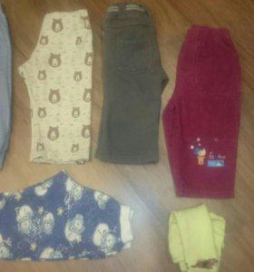 Штаны, кофты, футболки, костюмы