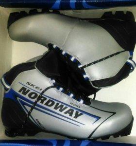Лыжи беговые, ботинки, палочки