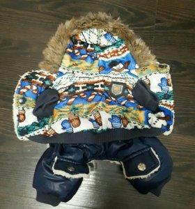 Костюм для собаки зимний