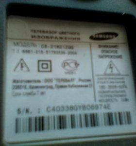 "Samsung 21"""