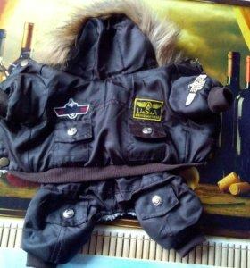 Куртка для чихуахуа