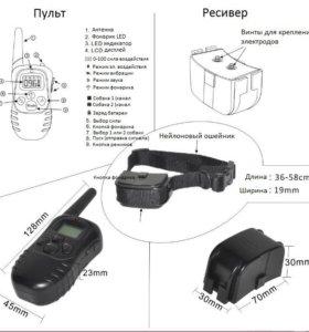 электронный ошейник для дрессировки