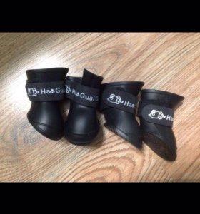 Резиновые ботинки для собак