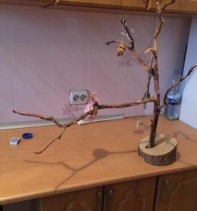 Дерево для попугая