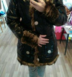 Пуховик зимний Royal Cat