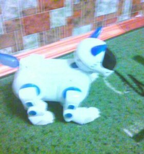 Продам щенка робота