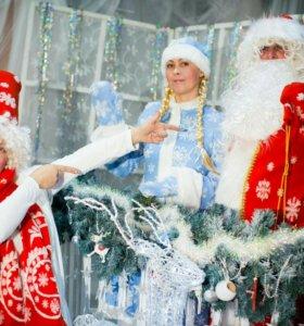 Дед Мороз на дом.
