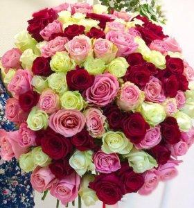 101 роза, 51 роза